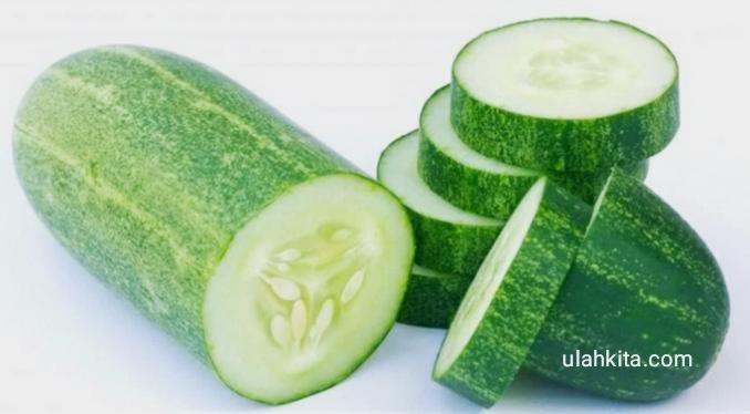 sayur lalapan yang bermanfaat bagi tubuh